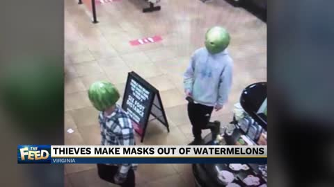 The Feed: Watermelon mayhem